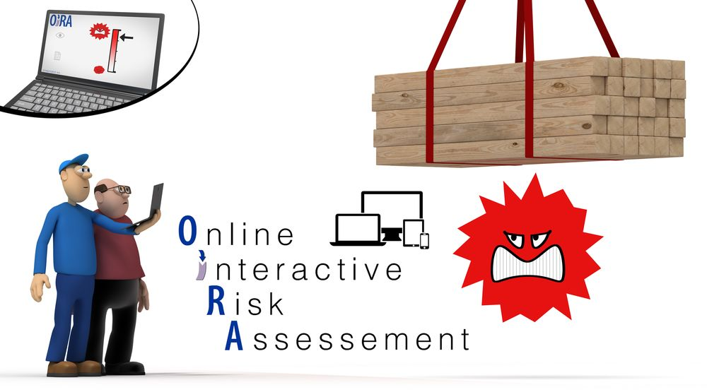 Napo in… risk assessment online
